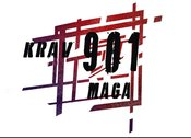 Krav Maga Self Defense in Memphis and Bartlett, TN